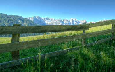 Mending fences through productive conflict: 5 points to consider